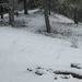 Téli ösvény