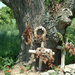 Betyárok fája 2004