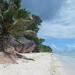 La Digue, Seychelles-szigetek 21