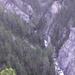 Gigantikus szúrdok a Zugenschlucht-ban