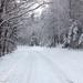 IMG 6117 Csökkenő dérben és hóban a Vörös-kereszt felé