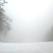 056 Téli erdő