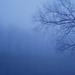 Köd 02