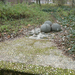 Nepliget-20111230-13-HarmasKoros