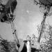 Vidampark-1960-30