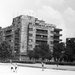 SzentIstvanPark-1957Korul-fortepan.hu-116993
