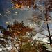 ablak az égre