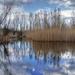 Kék-tó