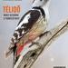 Album - Cikkek, publikációk