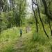 erdőben gyerekek