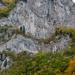 Rugova völgy - ősz