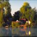 Horgász tó(2)