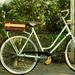 Anyukám bringája, a Holland