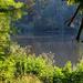 Reggel a tónál 86