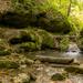 Óbánya - Csepegő szikla