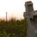 Elhagyatott temető, Újkígyós