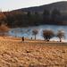 Befagyott tó