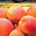 Sárgabarack Gyümölcs Nyár