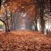 Balatonföldvár ősszel