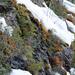 Téli színek 01