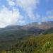 Tongariro Kiérve az erdőből 04