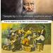 gyapotszedők