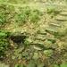 GePaRdLaCeE: Hidegvíz forrás - indafoto.hu