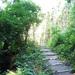 GePaRdLaCeE: P6120252 - indafoto.hu