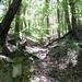 GePaRdLaCeE: P6130287 - indafoto.hu