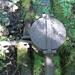 GePaRdLaCeE: P9120632 (Custom) - indafoto.hu