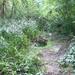 GePaRdLaCeE: P8130167 (Egyedi) - indafoto.hu
