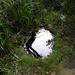 GePaRdLaCeE: P8130169 (Egyedi) - indafoto.hu