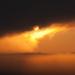 hajnali köd