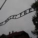 Album - Auschwitz 1