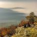 Album - Indafotóséta a Pilis hegyre