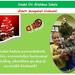 Karácsonyi üdvözlet 2013
