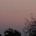 Októberi naplemente az őszi tájban