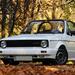 Album - Volkswagen Golf I Cabrio