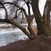 Veresegyház - tó part 2