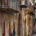 Costa - Palermo Via dei Biscottari - Palazzo Conte Federico