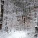 02 Hahó! Itt a hó