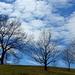 04 Tavaszi táj