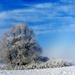 05 Tél a Medvesen