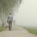 Séta a ködben.