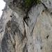 Blechmauernverschneidung 2013-07-12 13.54.59