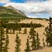 Sivatag a hegyek között I