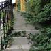 Organikus lépcsősor.