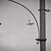 Lámpa, repülő