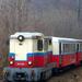 Mk45 2003 - Virágvölgy - Csillebérc