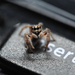 Insert spider